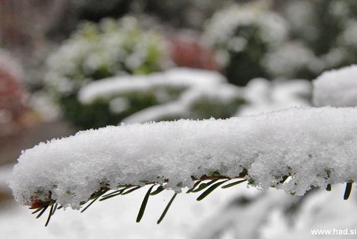 let-it-snow-05.jpg