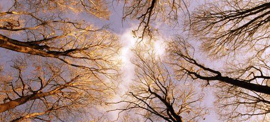 pogled-v-nebo-02.jpg