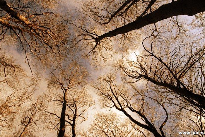pogled-v-nebo-05.jpg