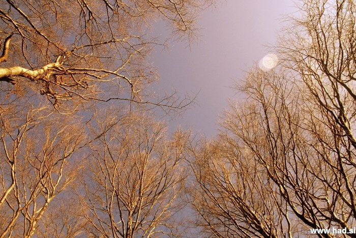 pogled-v-nebo-07.jpg