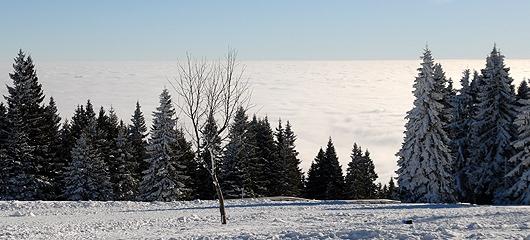 hoja-nad-oblaki-v-ritmu-malih-angelov-fotografije-01.jpg