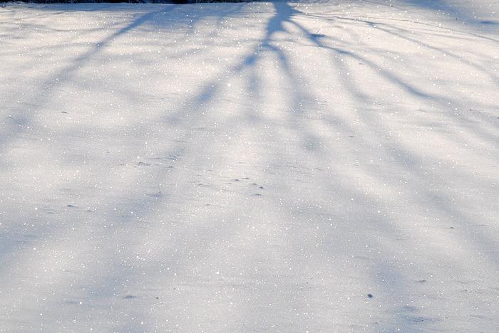 sprehod po snegu 05