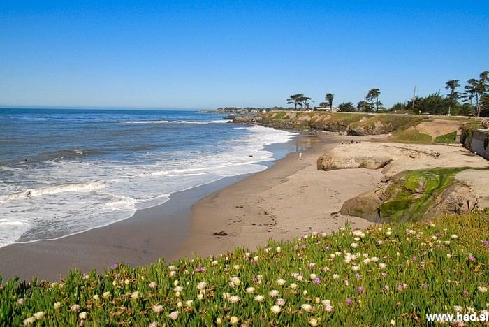 Santa Cruz photos 11