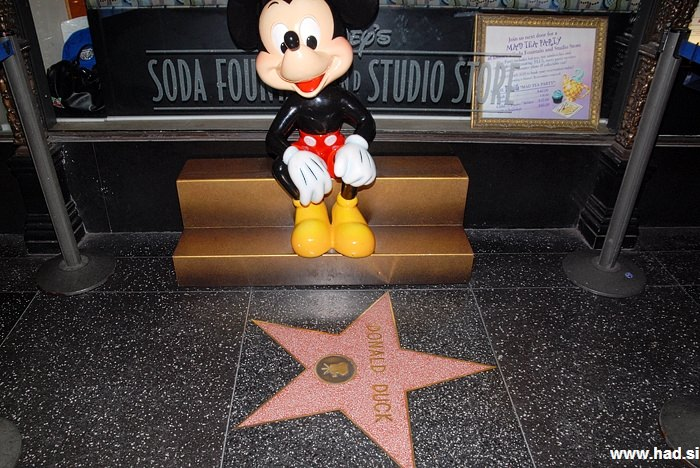 Hollywood Walk of Fame Photos 01