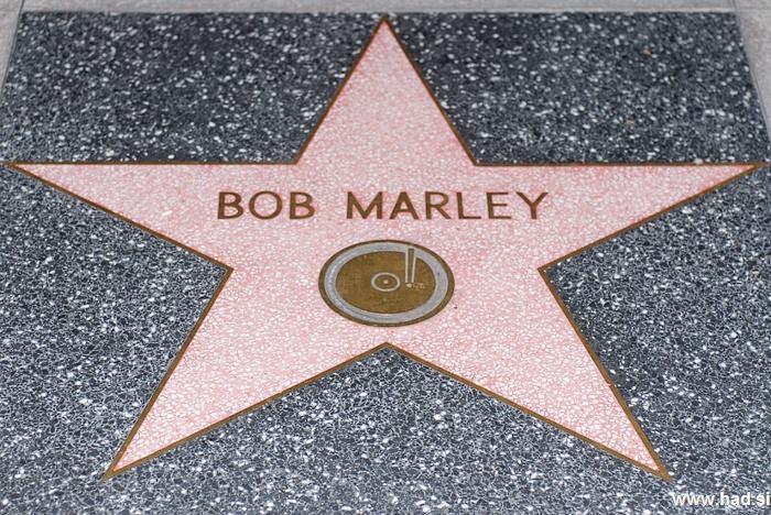 Hollywood Walk of Fame Photos 07