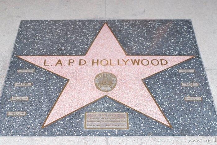 Hollywood Walk of Fame Photos 08