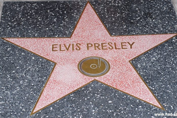 Hollywood Walk of Fame Photos 12