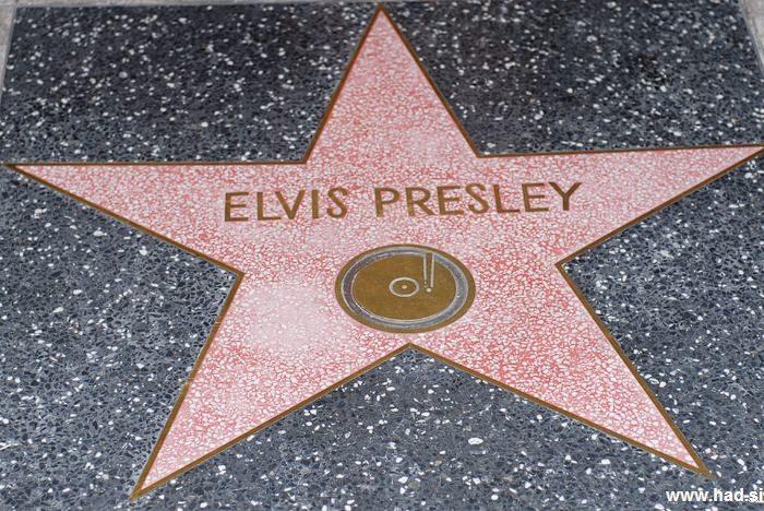 Hollywood Walk of Fame Photos 12
