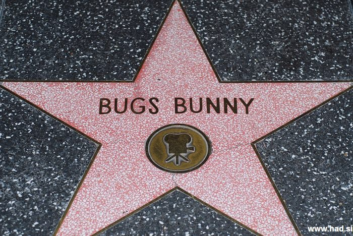 Hollywood Walk of Fame Photos 14