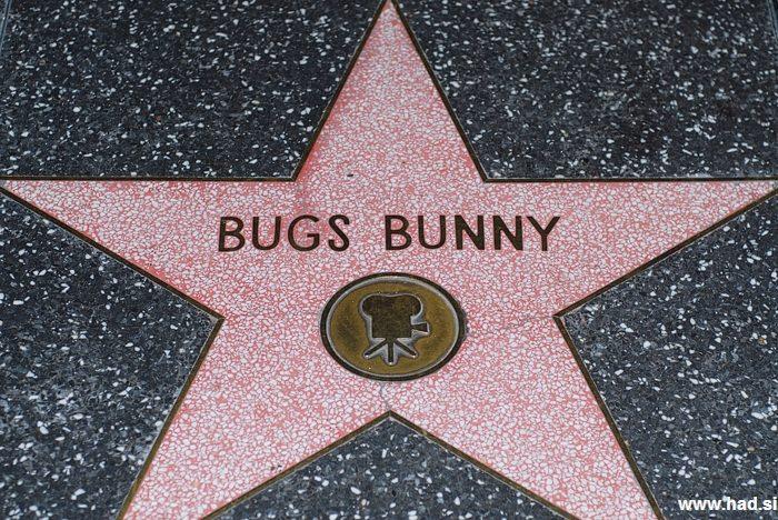 Hollywood Walk of Fame Photos 14