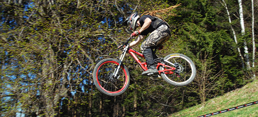 specialized dh javor