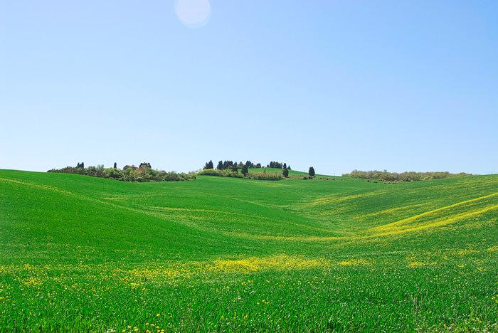 toskana_tuscany11