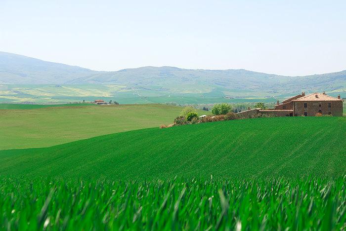 toskana_tuscany8