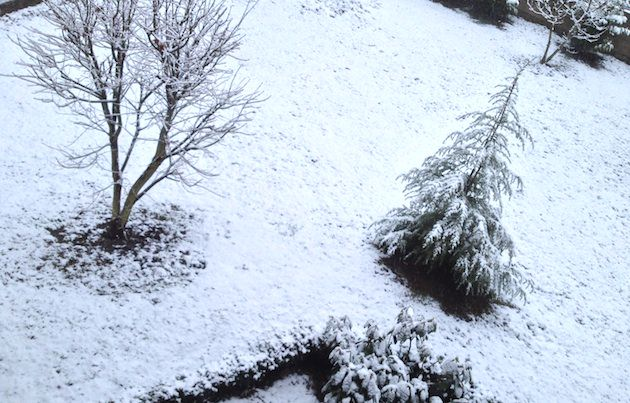 sneg_april