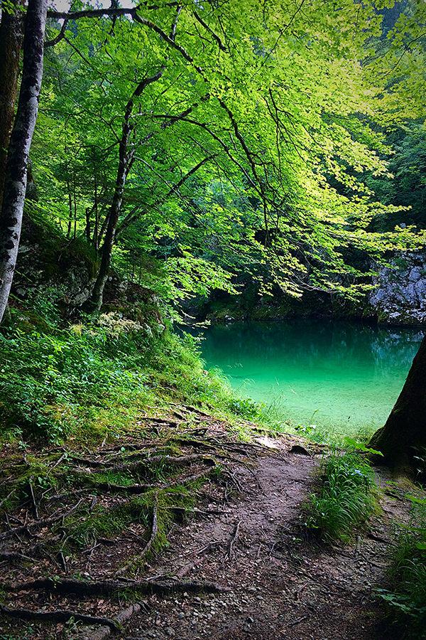 bohinjsko_jezero_008
