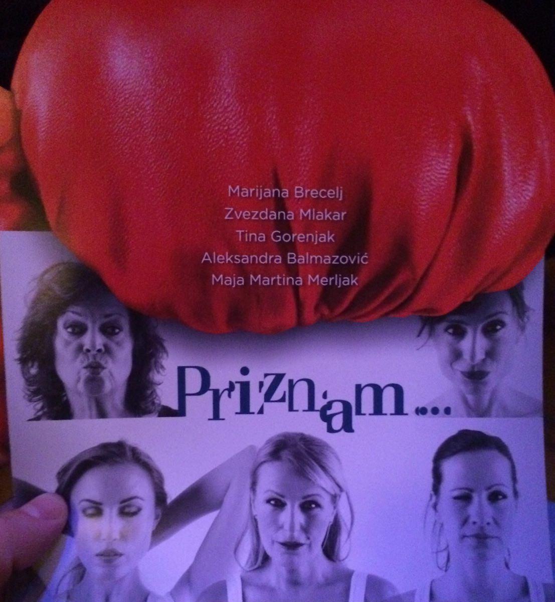 priznam Aleksandra Balmazović, Maja Martina Merljak, Tina Gorenjak, Marijana Brecelj, Zvezdana Mlakar
