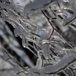 Rapsodija v ledu 8