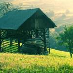 Čemšeniška planina v soboto zjutraj 11