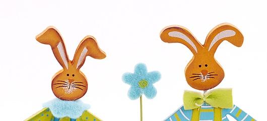 zajcica in zajcek fotografije 03 Zajčiča in zajček