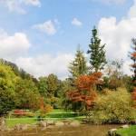 Arboretum volcji potok fotografije 06