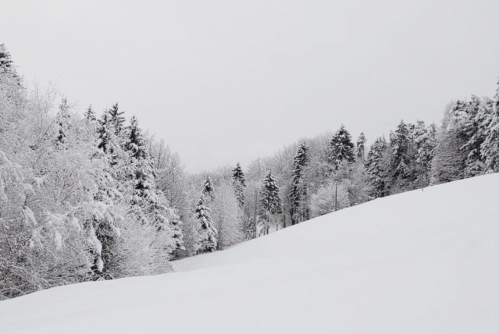 Sneg - dost mam 01