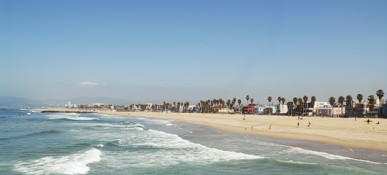 venice beach photos  17