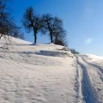 sprehod_po_snegu_01