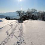 sprehod_po_snegu_05
