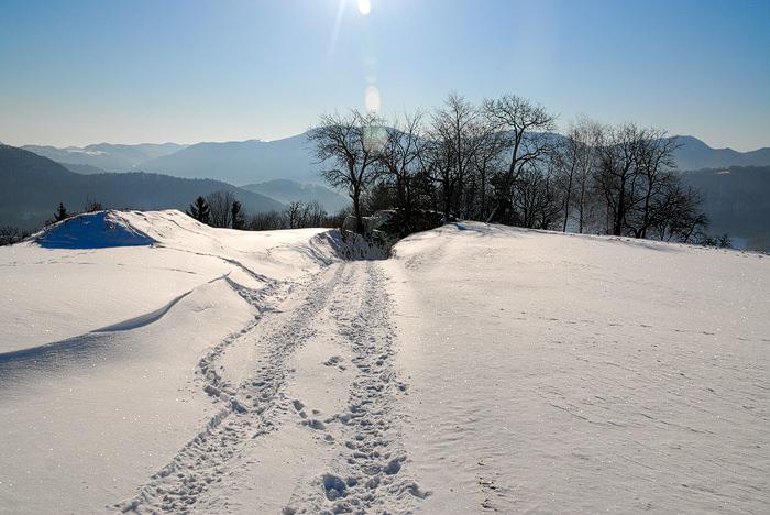 sprehod po snegu 05 Novoletna voščila, novoletne voščilnice, novoletni verzi, novoletne čestitke