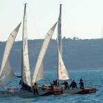 Dnevnikova regata na SOFu 1