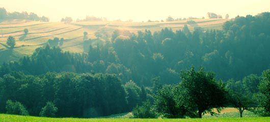 Čemšeniška planina v soboto zjutraj 17