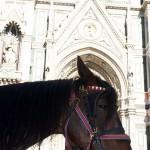 firenze fotke2 150x150 Firence, malo drugače   fotografije