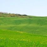toskana tuscany12 150x150 Resnična Toskana   kičaste fotografije