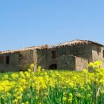 toskana_tuscany4