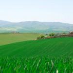toskana tuscany8 150x150 Resnična Toskana   kičaste fotografije