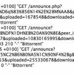 DDoS - distributed denial of service čez bittorrent