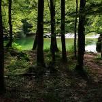 bohinjsko_jezero_006