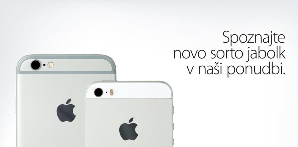 apple_hofer