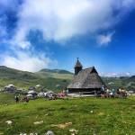 velika_planina_kranjski_rak_003