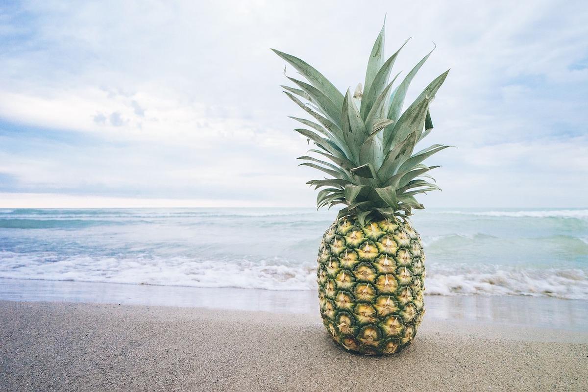 Kako pravilno jesti ananas ananas evforija zajela internete