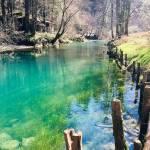 Skok v izvir Ljubljanice Mocilnik 8 stopinj2