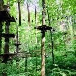 Adrenalinski park Erlebniswald Mainau 1