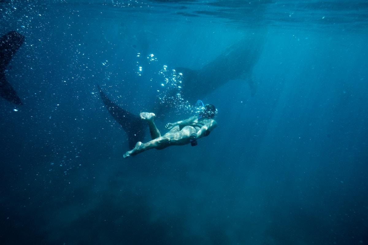 Alenka Artnik je s potopom 111 metrov globoko postavila nov svetovni rekord