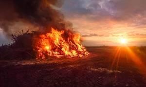 Bojan Požar si zeli postati mucenec