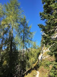 Kam v hribe Planina Blato – Sedmera jezera 1685m 16
