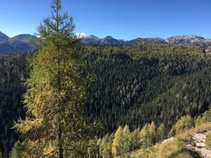Kam v hribe Planina Blato – Sedmera jezera 1685m 18