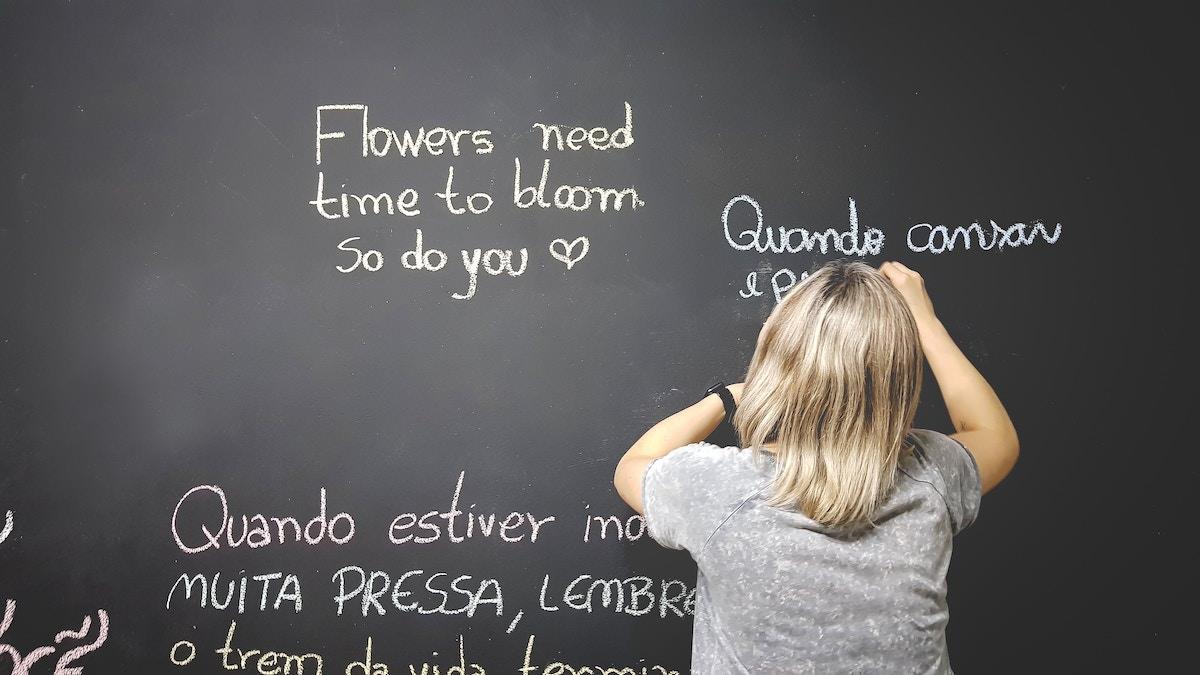 Uvajanje pouka srbscine v solah gre za dodaten pouk srbskega jezika