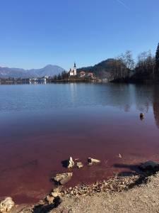 Blejsko jezero je rdece 3