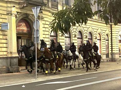 policijski psi in konji